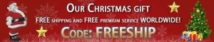 Free shipping in December