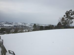 Snow covered landscape in South Devon